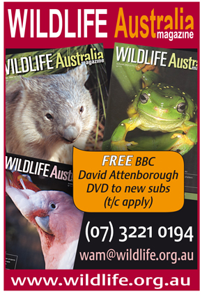 Wildlife Australia Advertisement